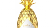 pinaq-gold